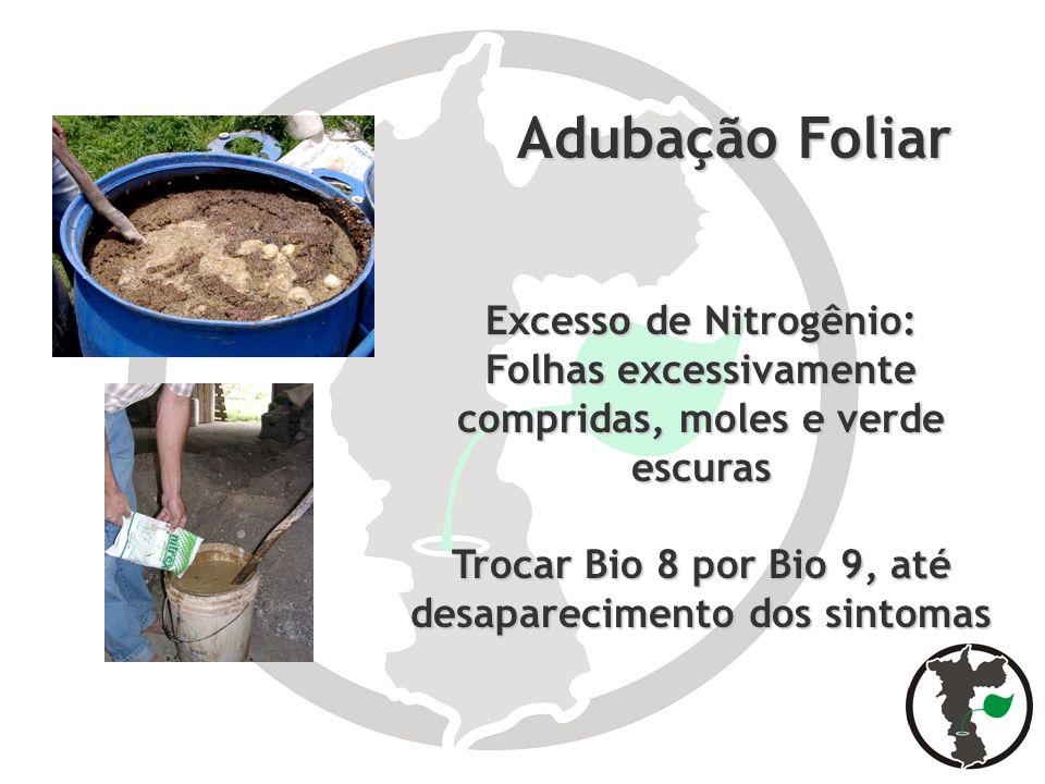 Adubação Foliar Adubação Foliar Excesso de Nitrogênio: Folhas excessivamente compridas, moles e verde escuras Trocar Bio 8 por Bio 9, até desaparecime