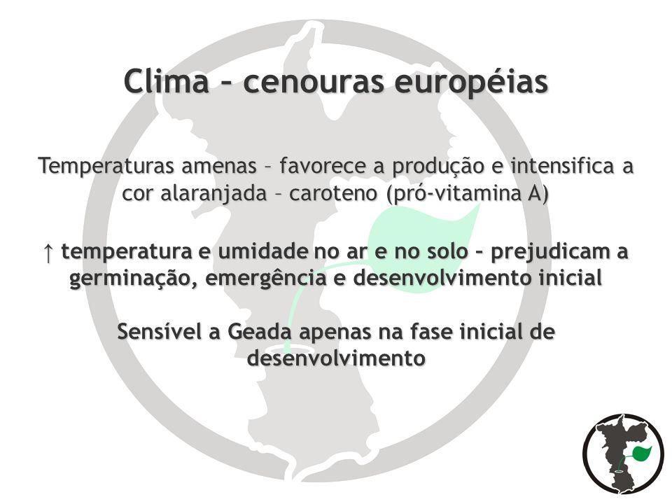 Clima – cenouras européias Temperaturas amenas – favorece a produção e intensifica a cor alaranjada – caroteno (pró-vitamina A) temperatura e umidade