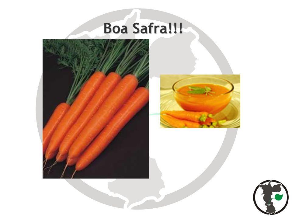 Boa Safra!!!