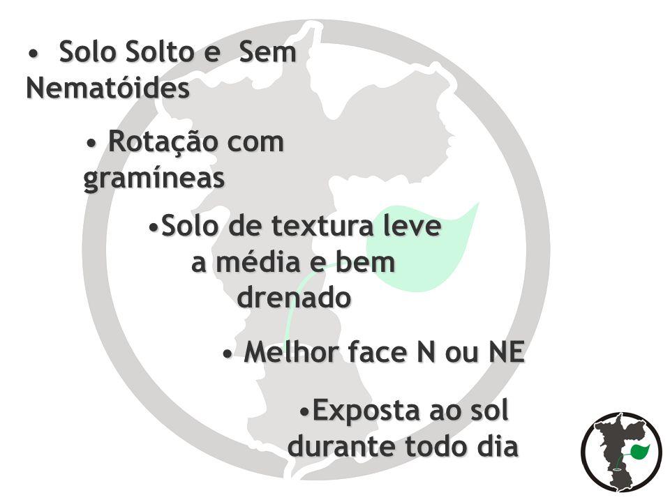 Adubação Foliar Adubação Foliar exigência em Fósforo, Potássio, Cálcio, Boro, Magnésio e Zinco exigência em Fósforo, Potássio, Cálcio, Boro, Magnésio e Zinco Nos primeiros 60 dias Bio 08 (1 litro) + CaB2 (100 ml)/ bomba alternado com Bio 08 (1 litro) + MS-3 (100 g)/ bomba semanal