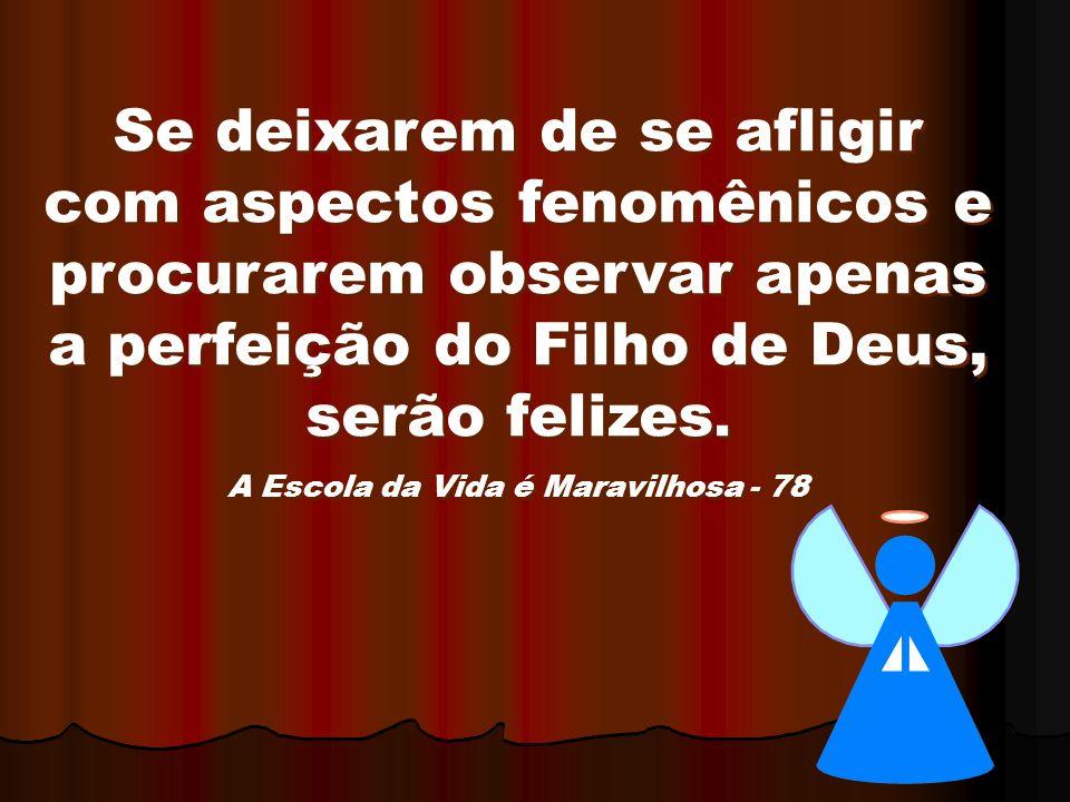 Se deixarem de se afligir com aspectos fenomênicos e procurarem observar apenas a perfeição do Filho de Deus, serão felizes. A Escola da Vida é Maravi