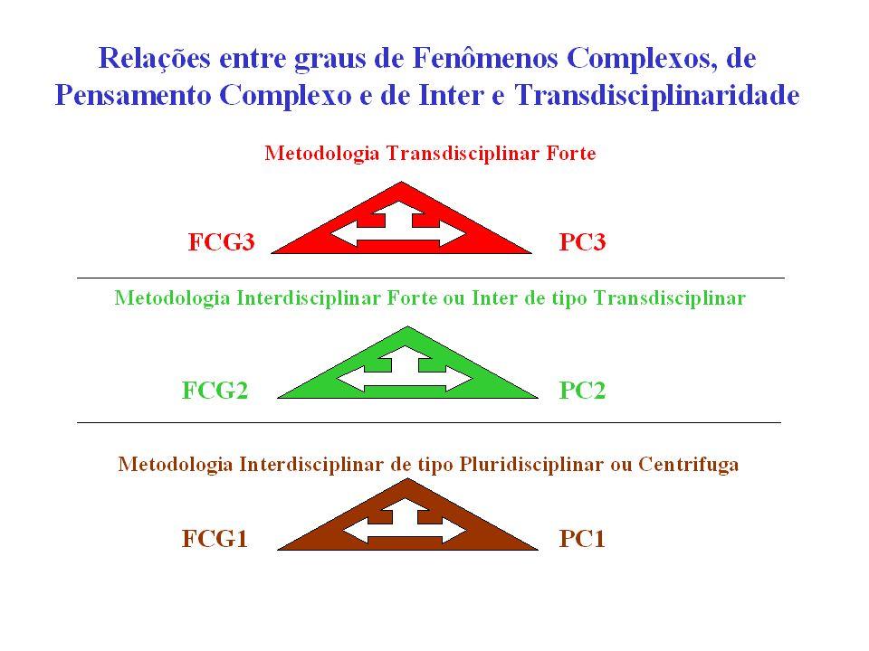 Tipos ou graus de fenômenos/problemas complexos Fenômenos/Problemas Complexos de 1o Grau (FCG1) Fenômenos que estão nas fronteiras entre disciplinas p