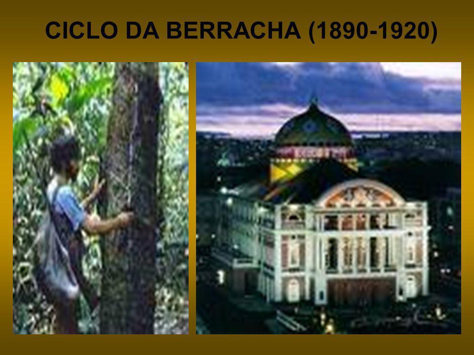 CICLO DA BERRACHA (1890-1920)