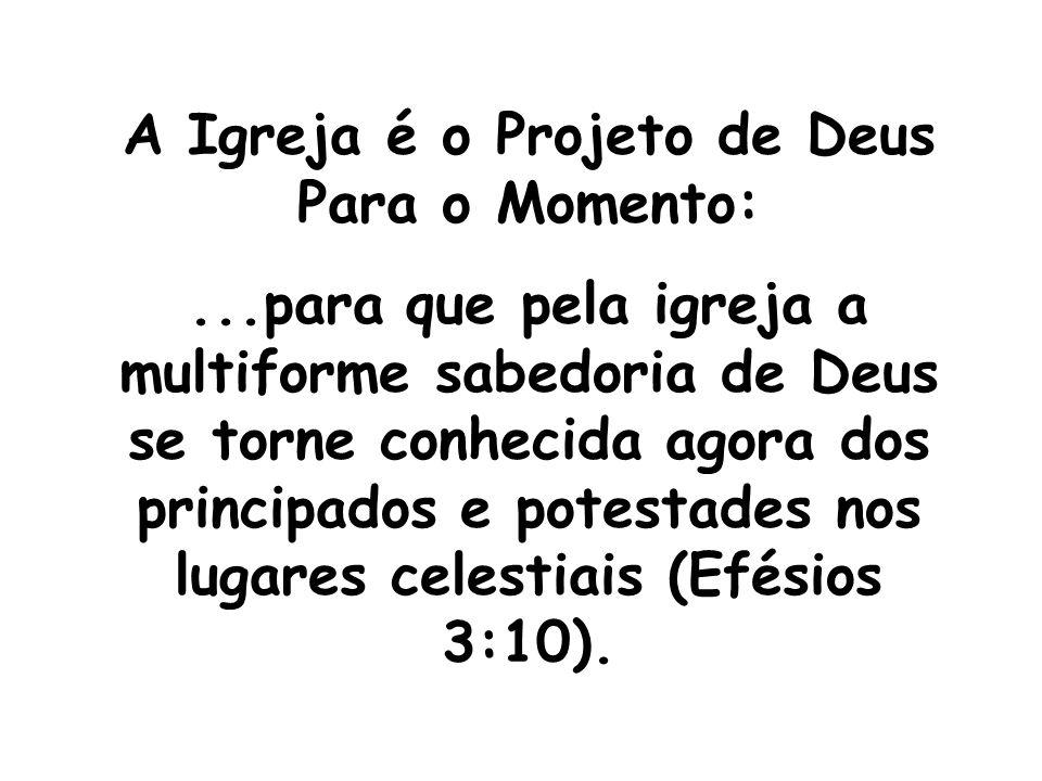 A Igreja é o Projeto de Deus Para o Momento:...para que pela igreja a multiforme sabedoria de Deus se torne conhecida agora dos principados e potestad