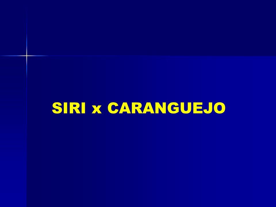 ISOPODA CORPO COMPRIMIDO DORSOVENTRALMENTE (TATUZINHO DE JARDIM) AMPHIOPODA CORPO COMPRIMIDO LATERALMENTE, MARINHOS (Gammarus) DECAPODA LATERALMENTE C
