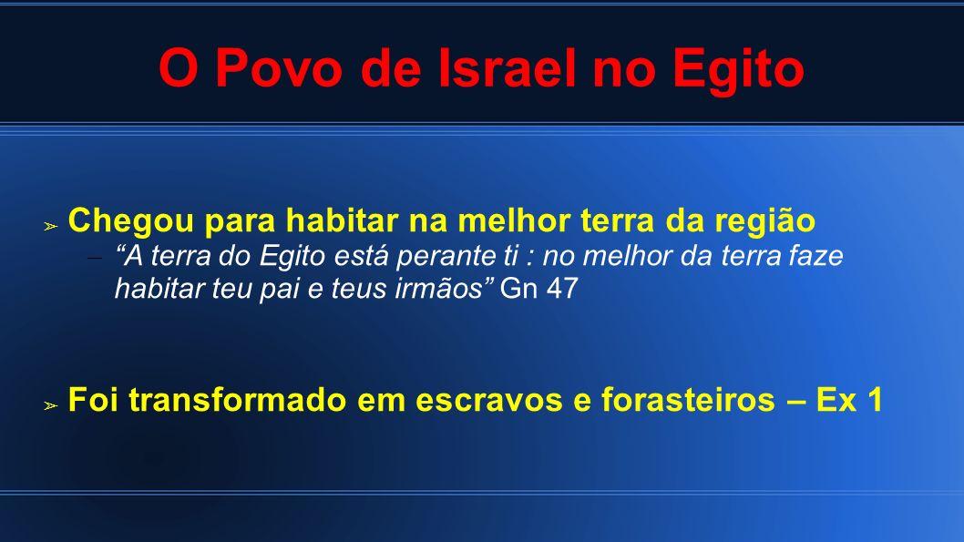 O Povo de Israel no Egito Chegou para habitar na melhor terra da região – A terra do Egito está perante ti : no melhor da terra faze habitar teu pai e
