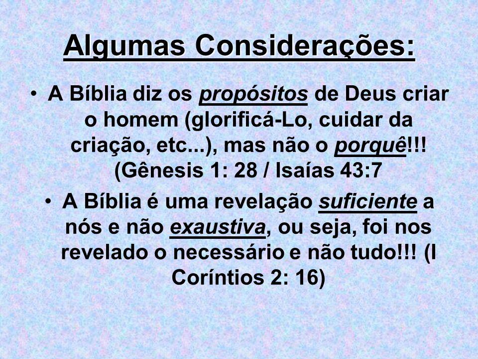 Algumas Considerações: A Bíblia diz os propósitos de Deus criar o homem (glorificá-Lo, cuidar da criação, etc...), mas não o porquê!!! (Gênesis 1: 28
