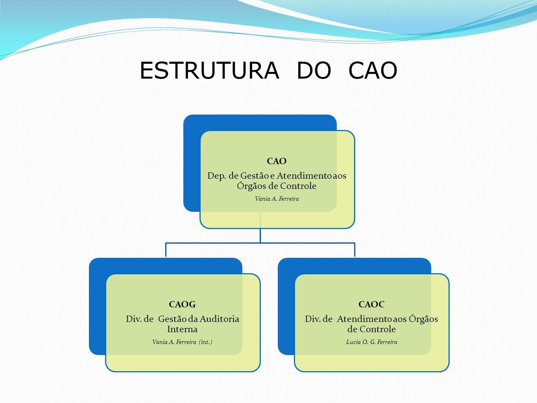 ESTRUTURA DO CAO CAO Dep. de Gestão e Atendimento aos Órgãos de Controle Vania A. Ferreira CAOG Div. de Gestão da Auditoria Interna Vania A. Ferreira