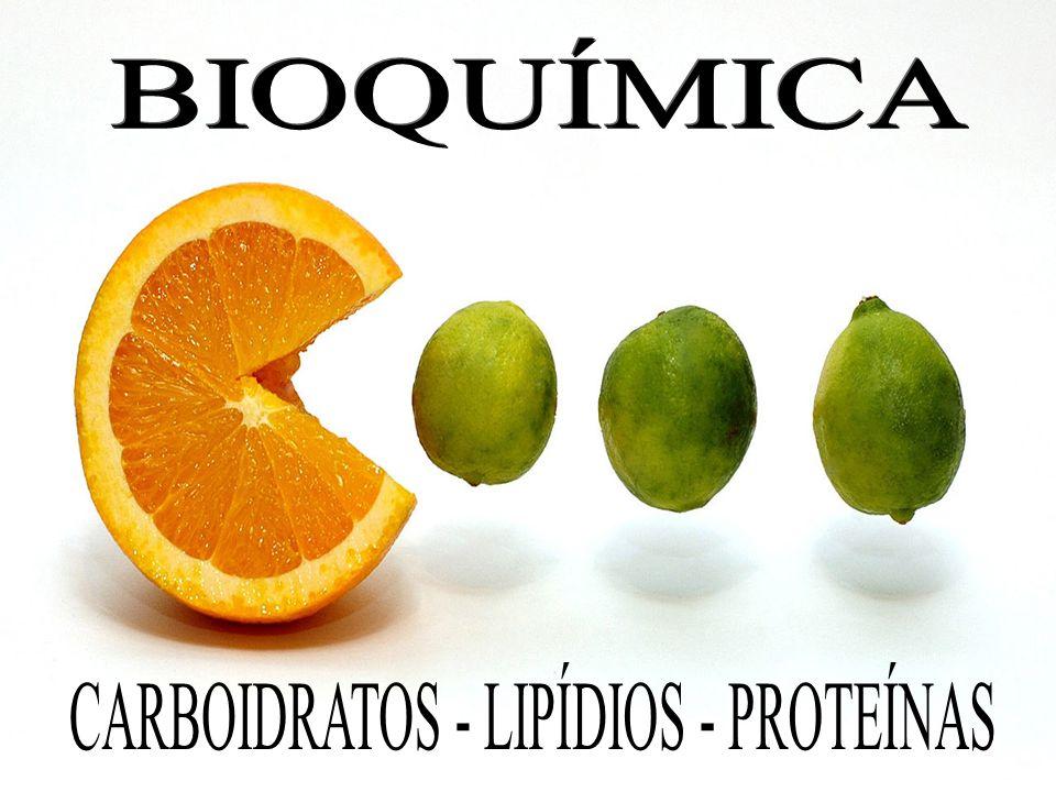 A maioria das proteínas apresenta entre 100 e 10.000 unidades de α-aminoácidos Constituinte Básico dos músculos, dos, Nervos, dos anticorpos e das enzimas