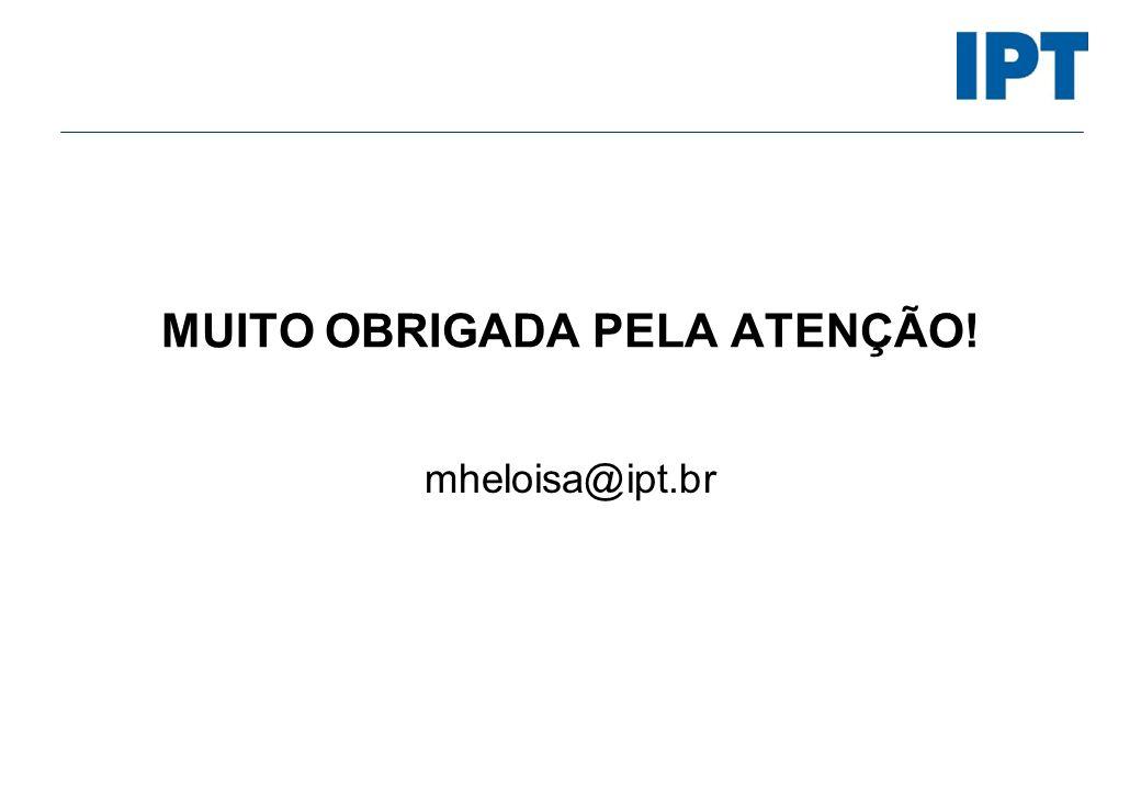 MUITO OBRIGADA PELA ATENÇÃO! mheloisa@ipt.br