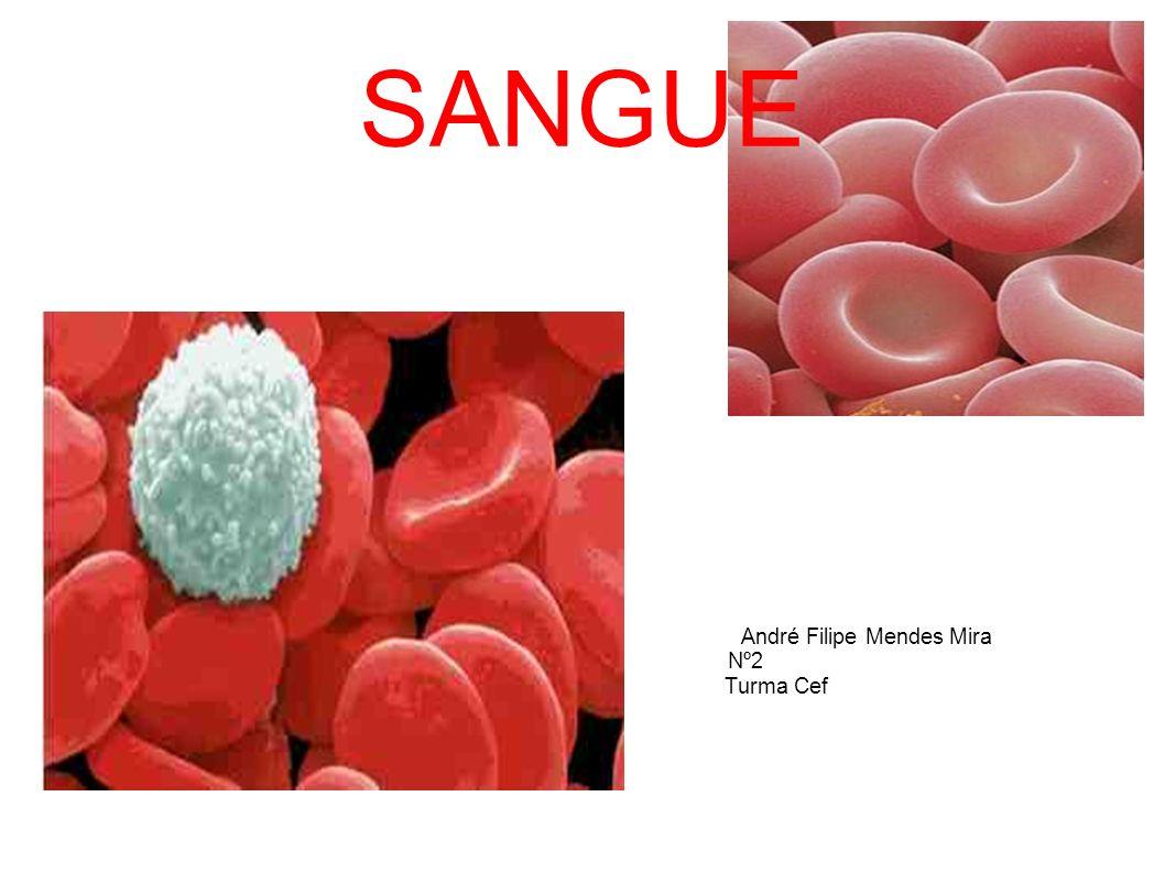 Indice: Sangue: Constituição do sanguen (imagem c/ legenda); Função geral do sangue; Função de cada um dos elementos do sangue.