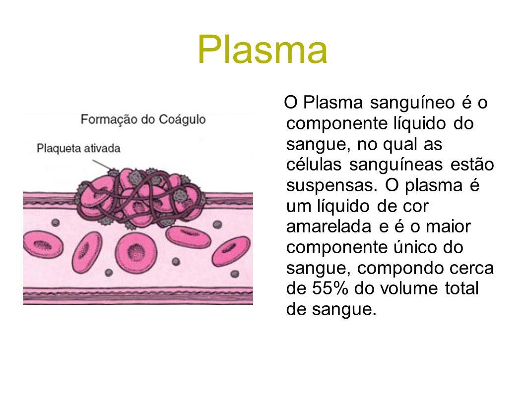 Plasma O Plasma sanguíneo é o componente líquido do sangue, no qual as células sanguíneas estão suspensas. O plasma é um líquido de cor amarelada e é