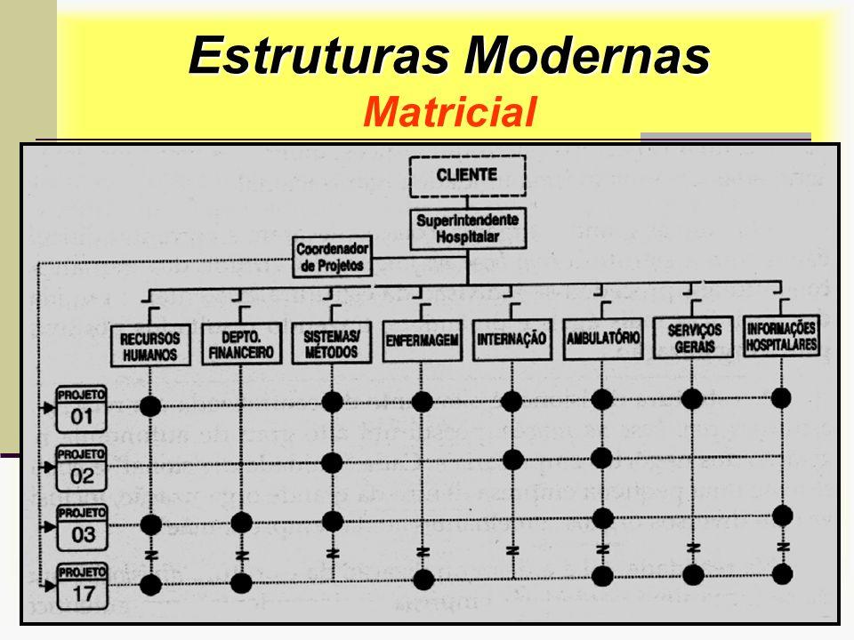 Prof. Sérgio Monteiro Fevereiro 200834 Estruturas Modernas Estruturas Modernas Matricial