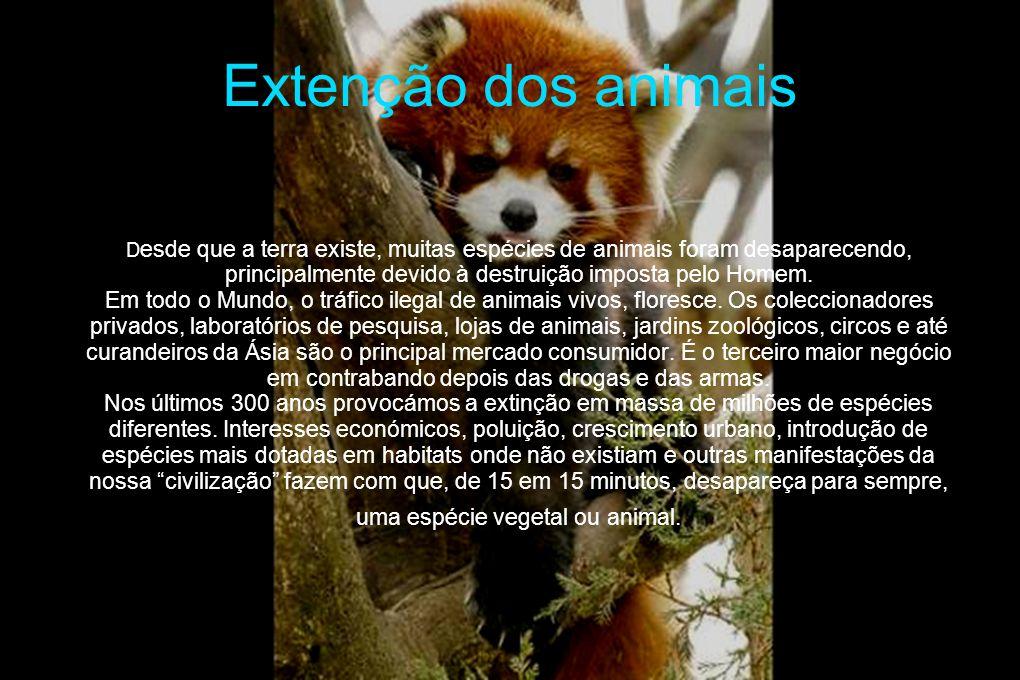 Extenção dos animais D esde que a terra existe, muitas espécies de animais foram desaparecendo, principalmente devido à destruição imposta pelo Homem.