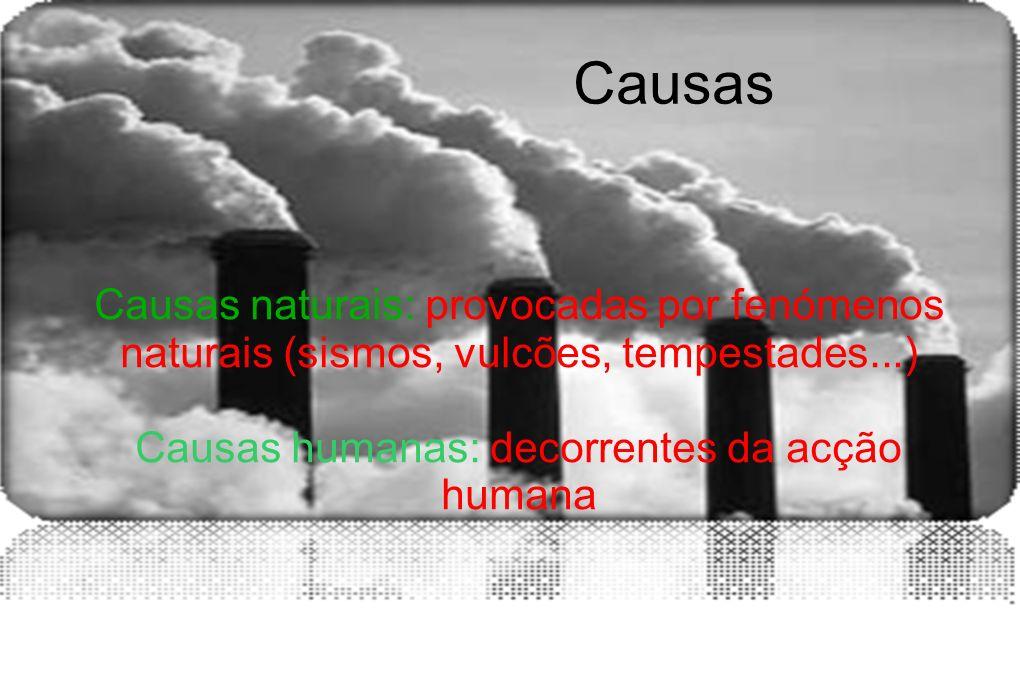 Causas Causas naturais: provocadas por fenómenos naturais (sismos, vulcões, tempestades...) Causas humanas: decorrentes da acção humana