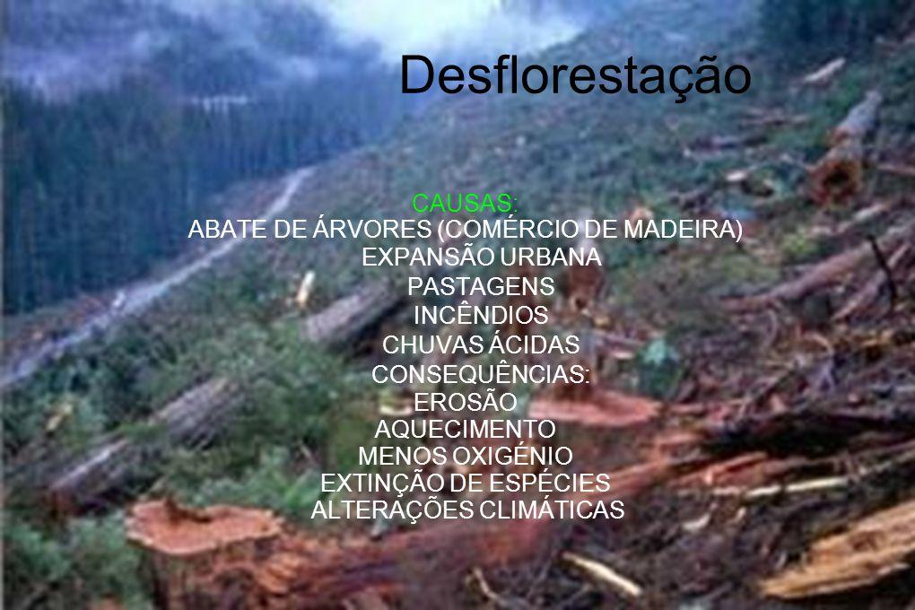 Desflorestação CAUSAS: ABATE DE ÁRVORES (COMÉRCIO DE MADEIRA) EXPANSÃO URBANA PASTAGENS INCÊNDIOS CHUVAS ÁCIDAS CONSEQUÊNCIAS: EROSÃO AQUECIMENTO MENO