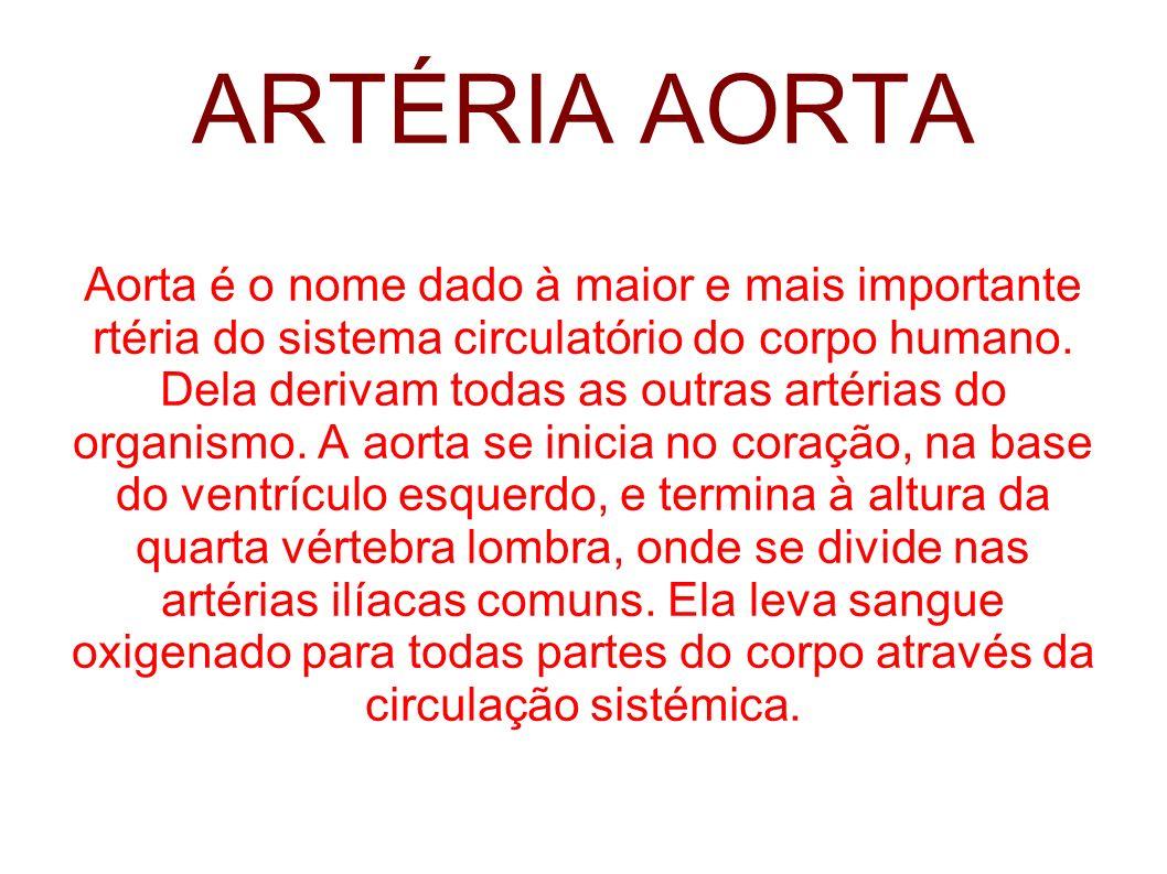 ARTÉRIA AORTA Aorta é o nome dado à maior e mais importante rtéria do sistema circulatório do corpo humano. Dela derivam todas as outras artérias do o