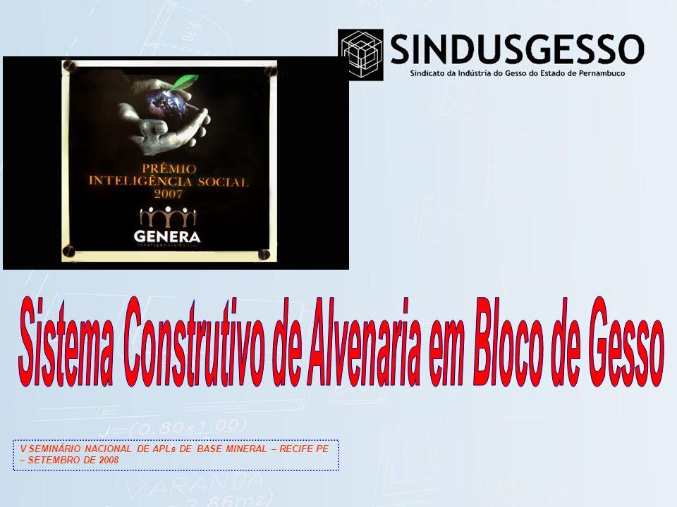 V SEMINÁRIO NACIONAL DE APLs DE BASE MINERAL – RECIFE PE – SETEMBRO DE 2008