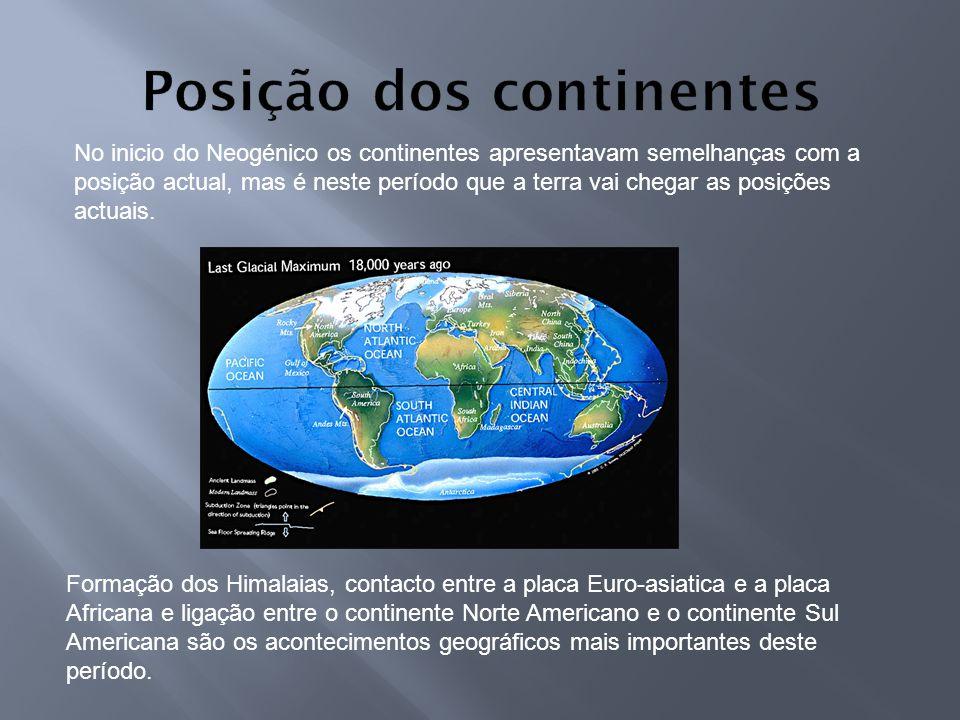 No inicio do Neogénico os continentes apresentavam semelhanças com a posição actual, mas é neste período que a terra vai chegar as posições actuais. F