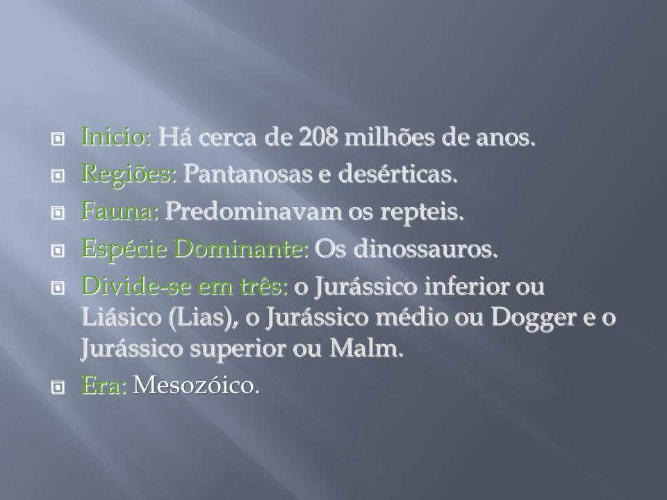 Inicio: Há cerca de 208 milhões de anos. Inicio: Há cerca de 208 milhões de anos. Regiões: Pantanosas e desérticas. Regiões: Pantanosas e desérticas.