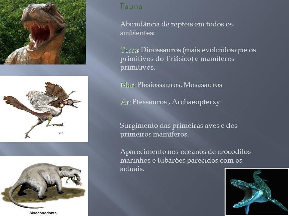 Fauna Abundância de repteis em todos os ambientes: Terra Terra: Dinossauros (mais evoluídos que os primitivos do Triásico) e mamíferos primitivos. Mar