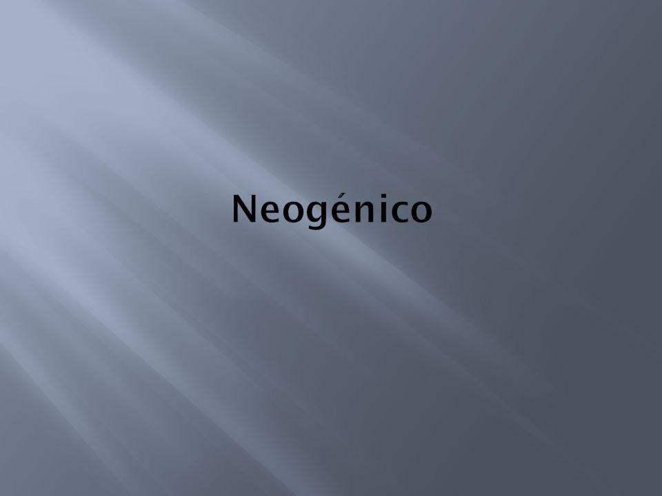 Neogénico