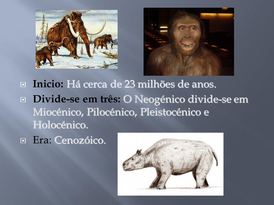 Há cerca de 23 milhões de anos. Inicio: Há cerca de 23 milhões de anos. O Neogénico divide-se em Miocénico, Pilocénico, Pleistocénico e Holocénico. Di