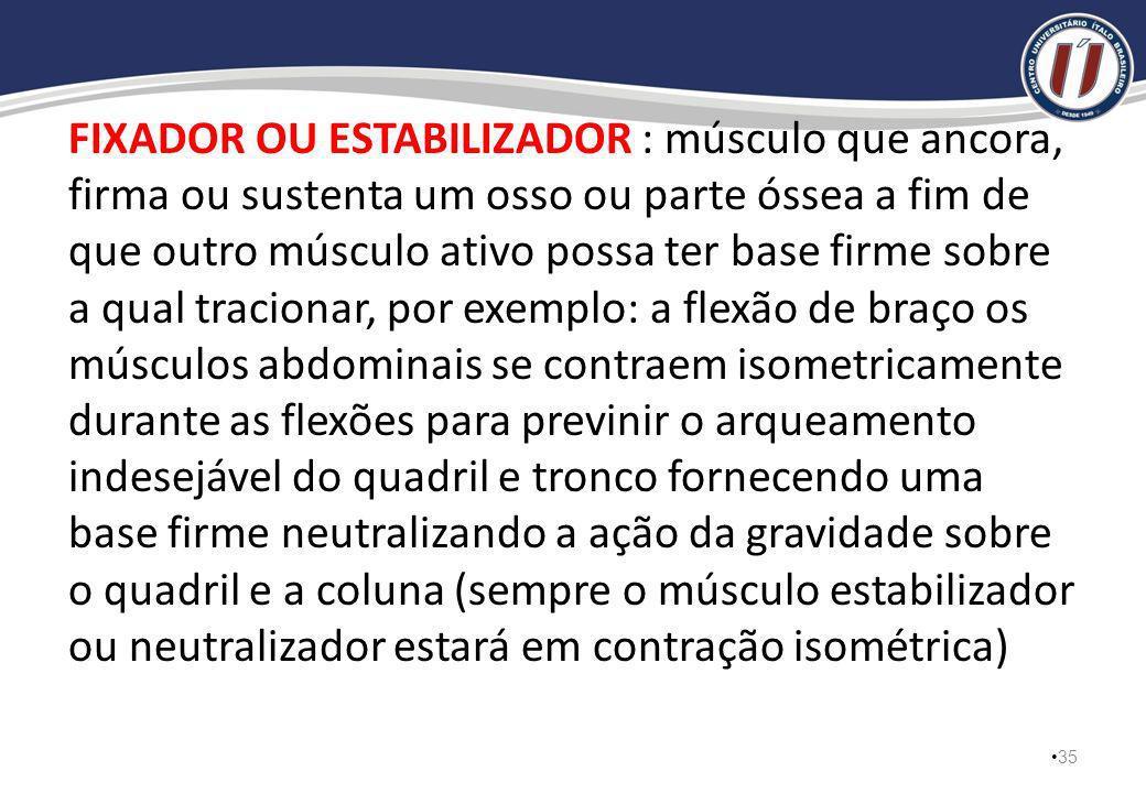 ANTAGONISTA : músculo cuja a contração tende a produzir uma ação articular exatamente oposta a alguma ação articular dada de outro músculo, um músculo