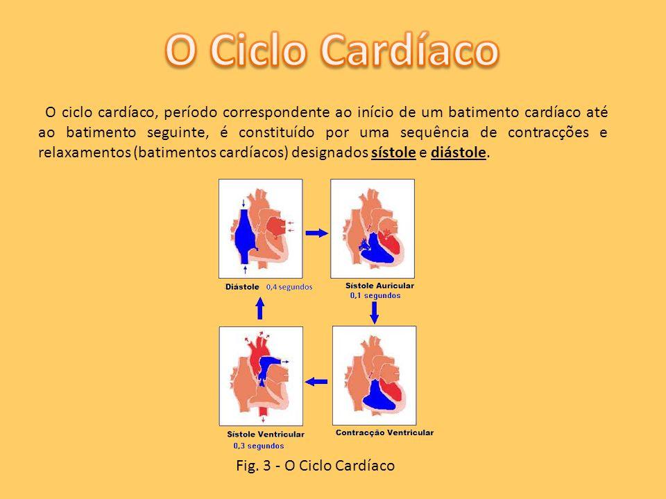 O ciclo cardíaco, período correspondente ao início de um batimento cardíaco até ao batimento seguinte, é constituído por uma sequência de contracções