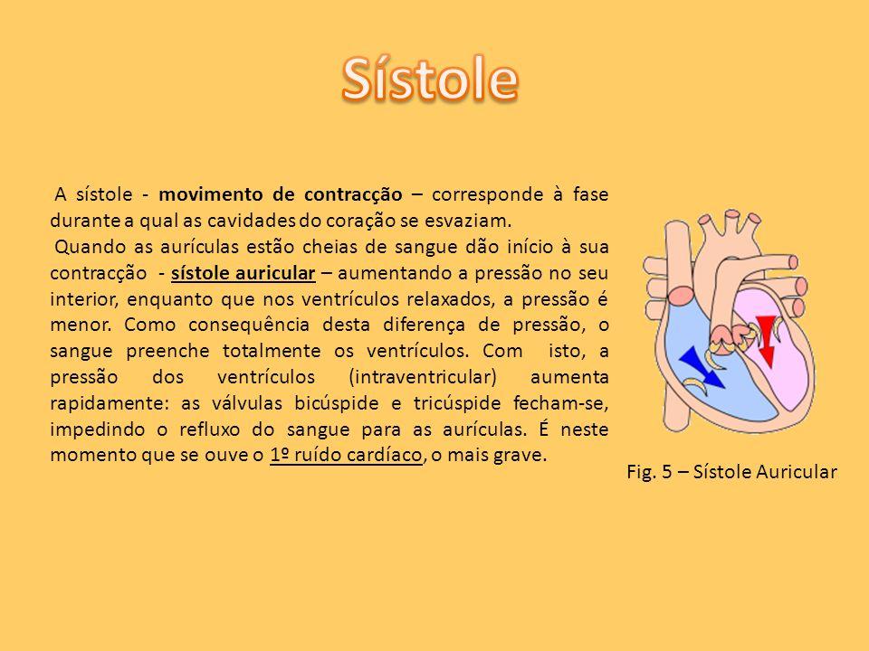 A sístole - movimento de contracção – corresponde à fase durante a qual as cavidades do coração se esvaziam. Quando as aurículas estão cheias de sangu