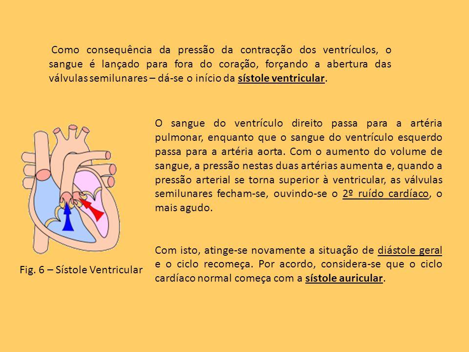 O sangue do ventrículo direito passa para a artéria pulmonar, enquanto que o sangue do ventrículo esquerdo passa para a artéria aorta. Com o aumento d