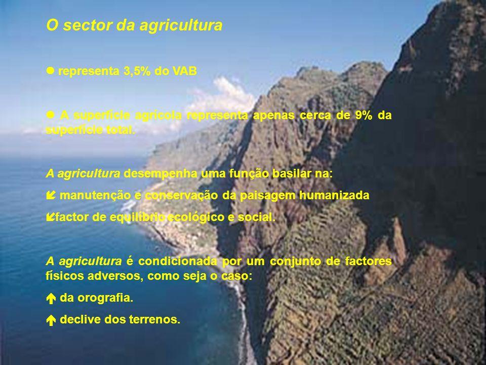6 A agricultura assenta na produção: banana, vinho, frutos subtropicais e diversos produtos hortícolas, incluindo a floricultura.