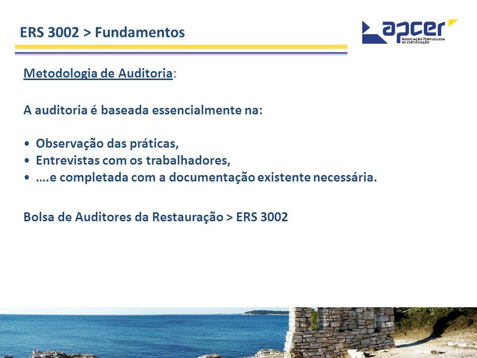 Metodologia de Auditoria: A auditoria é baseada essencialmente na: Observação das práticas, Entrevistas com os trabalhadores, ….e completada com a doc