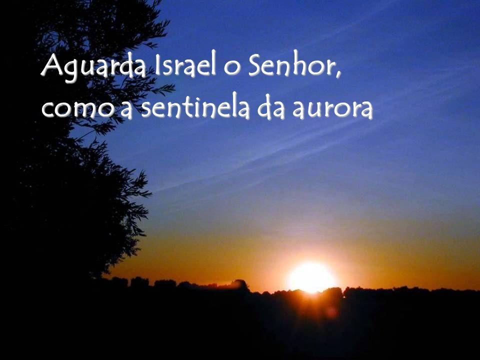Aguarda Israel o Senhor, como a sentinela da aurora