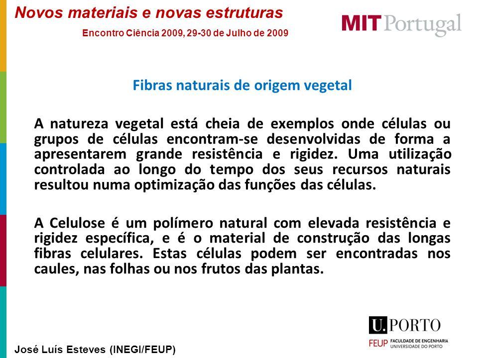 Novos materiais e novas estruturas José Luís Esteves (INEGI/FEUP) Encontro Ciência 2009, 29-30 de Julho de 2009 Fibras naturais de origem vegetal A na