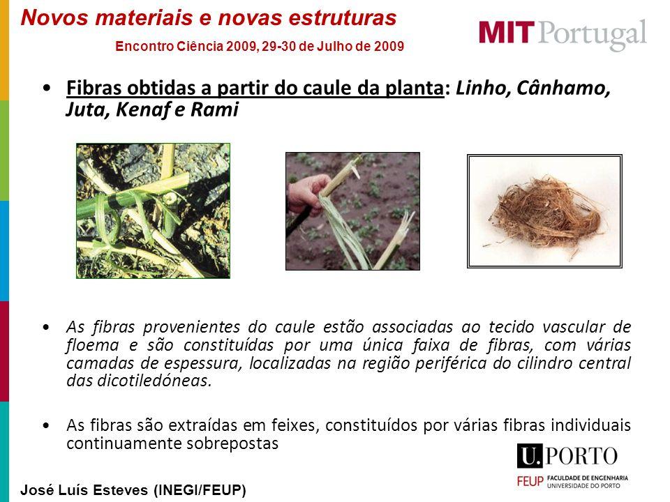 Novos materiais e novas estruturas José Luís Esteves (INEGI/FEUP) Encontro Ciência 2009, 29-30 de Julho de 2009 Fibras obtidas a partir do caule da pl