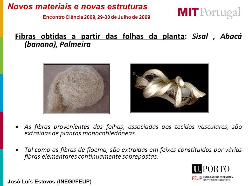 Novos materiais e novas estruturas José Luís Esteves (INEGI/FEUP) Encontro Ciência 2009, 29-30 de Julho de 2009 Fibras obtidas a partir das folhas da
