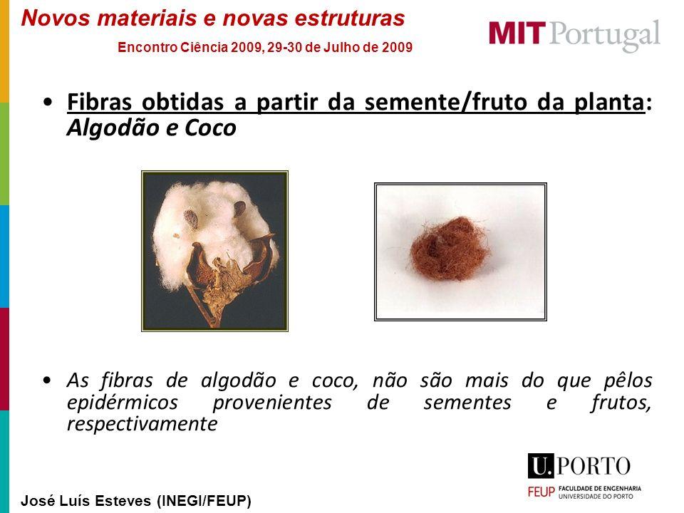 Novos materiais e novas estruturas José Luís Esteves (INEGI/FEUP) Encontro Ciência 2009, 29-30 de Julho de 2009 Fibras obtidas a partir da semente/fru