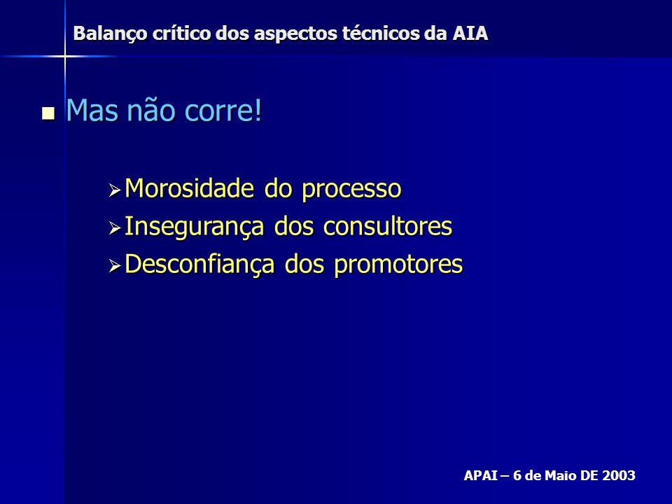 Balanço crítico dos aspectos técnicos da AIA APAI – 6 de Maio DE 2003 Mas não corre! Mas não corre! Morosidade do processo Morosidade do processo Inse