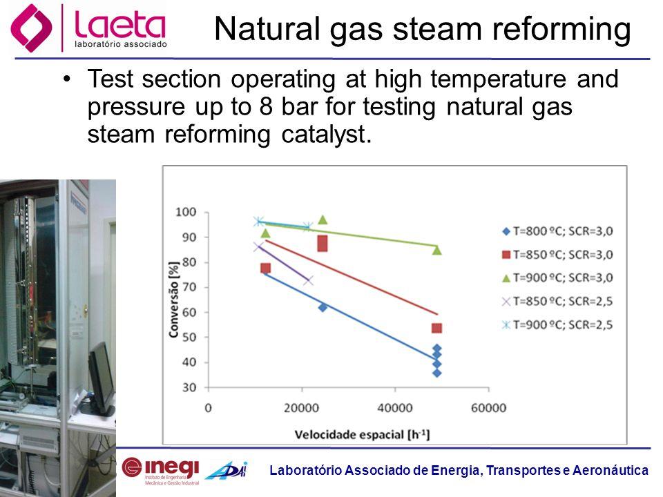 Laboratório Associado de Energia, Transportes e Aeronáutica Natural gas steam reforming Test section operating at high temperature and pressure up to