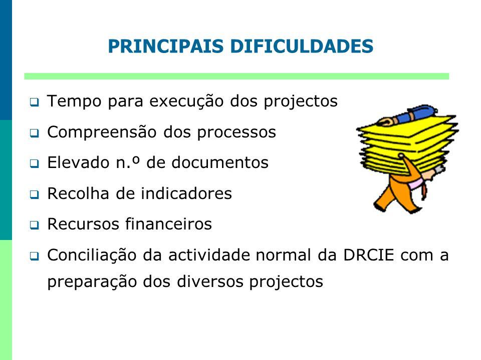 PRINCIPAIS DIFICULDADES Tempo para execução dos projectos Compreensão dos processos Elevado n.º de documentos Recolha de indicadores Recursos financei