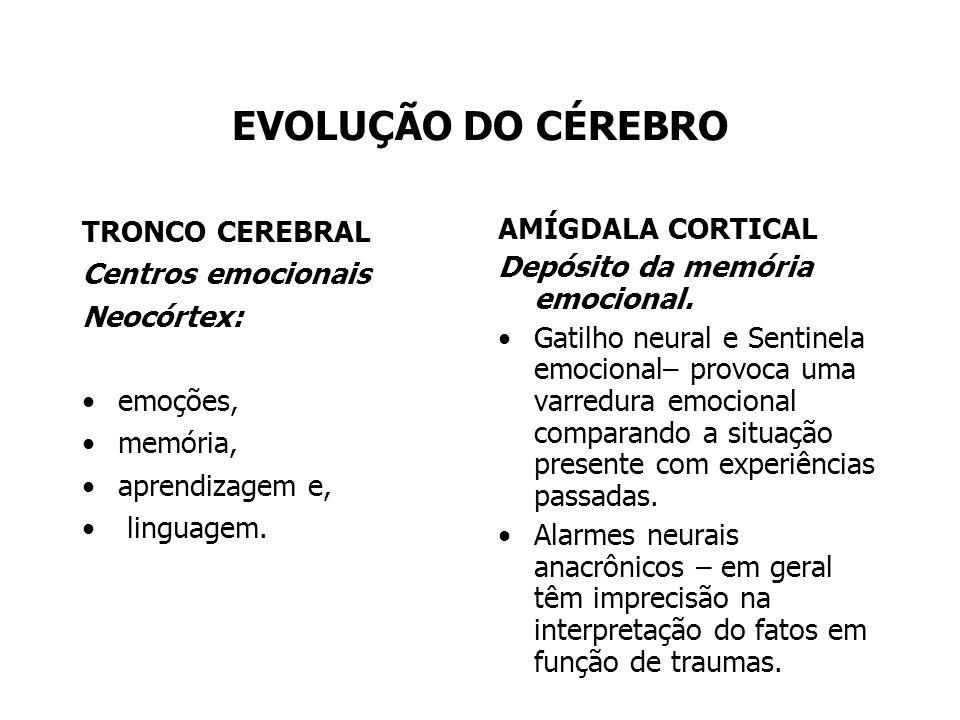 EVOLUÇÃO DO CÉREBRO TRONCO CEREBRAL Centros emocionais Neocórtex: emoções, memória, aprendizagem e, linguagem. AMÍGDALA CORTICAL Depósito da memória e
