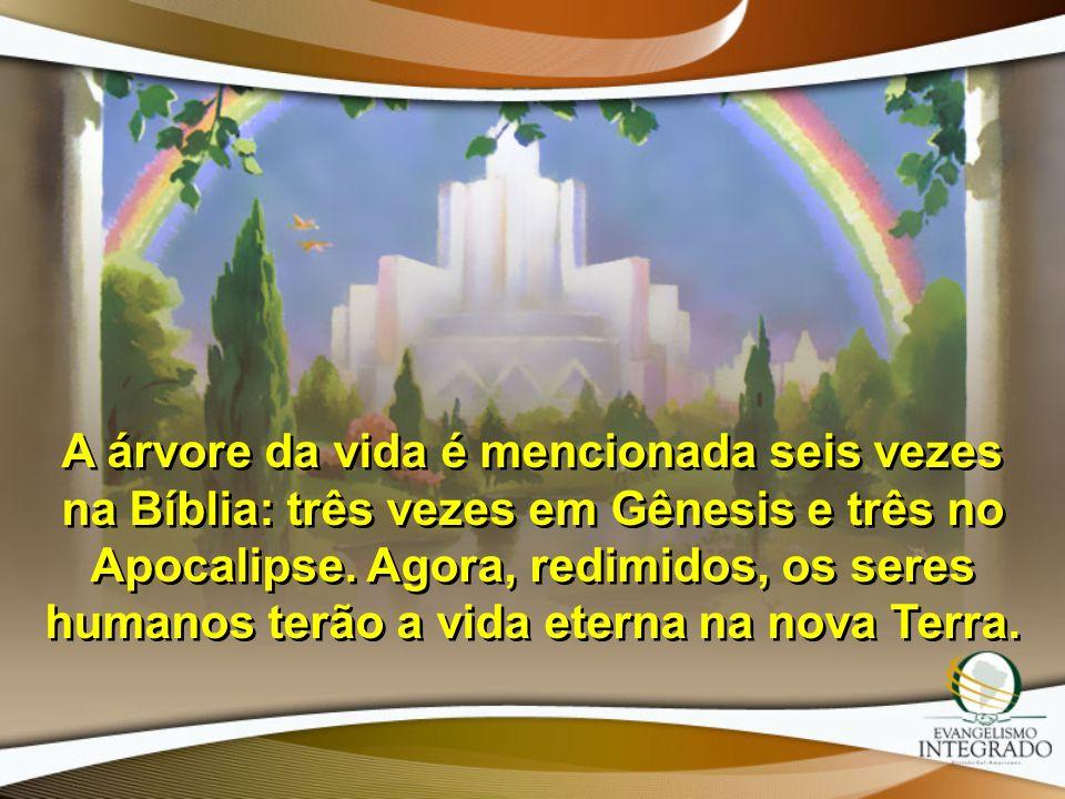 A árvore da vida é mencionada seis vezes na Bíblia: três vezes em Gênesis e três no Apocalipse. Agora, redimidos, os seres humanos terão a vida eterna