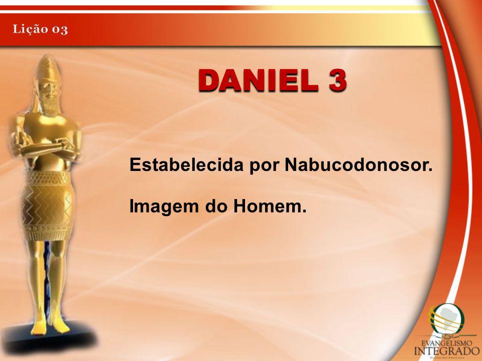 DANIEL 3 Estabelecida por Nabucodonosor. Imagem do Homem.