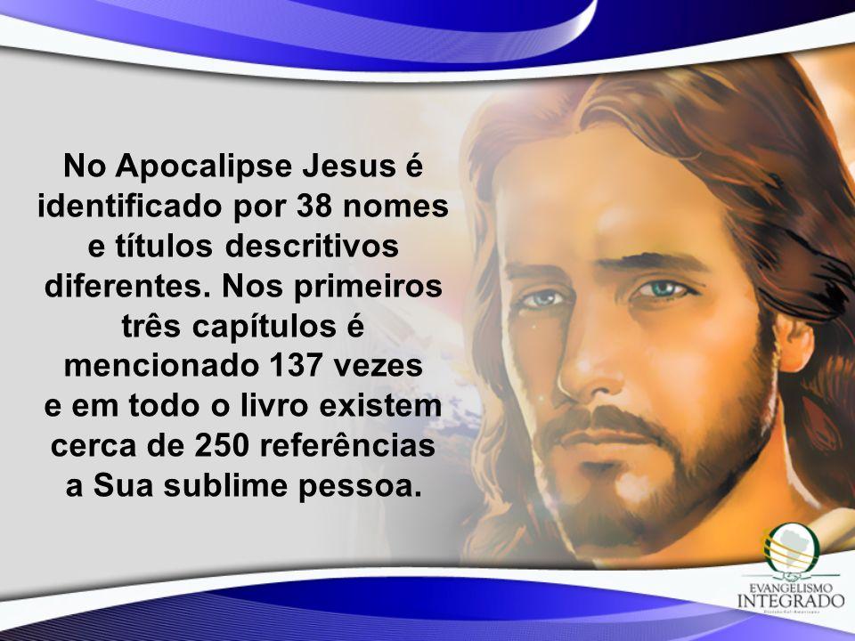 No Apocalipse Jesus é identificado por 38 nomes e títulos descritivos diferentes. Nos primeiros três capítulos é mencionado 137 vezes e em todo o livr