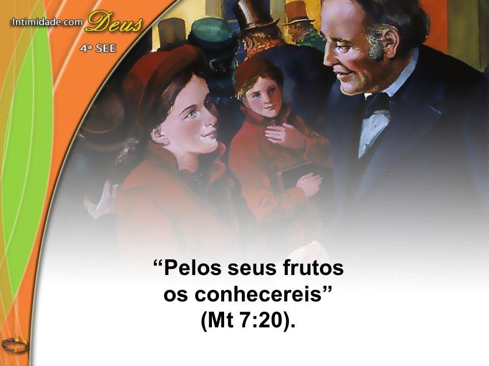 Pelos seus frutos os conhecereis (Mt 7:20).