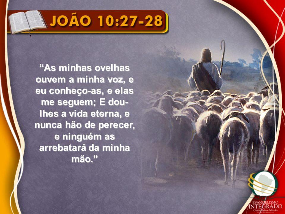 As minhas ovelhas ouvem a minha voz, e eu conheço-as, e elas me seguem; E dou- lhes a vida eterna, e nunca hão de perecer, e ninguém as arrebatará da