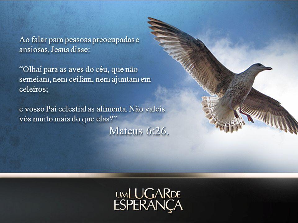 Ao falar para pessoas preocupadas e ansiosas, Jesus disse: Olhai para as aves do céu, que não semeiam, nem ceifam, nem ajuntam em celeiros; e vosso Pa