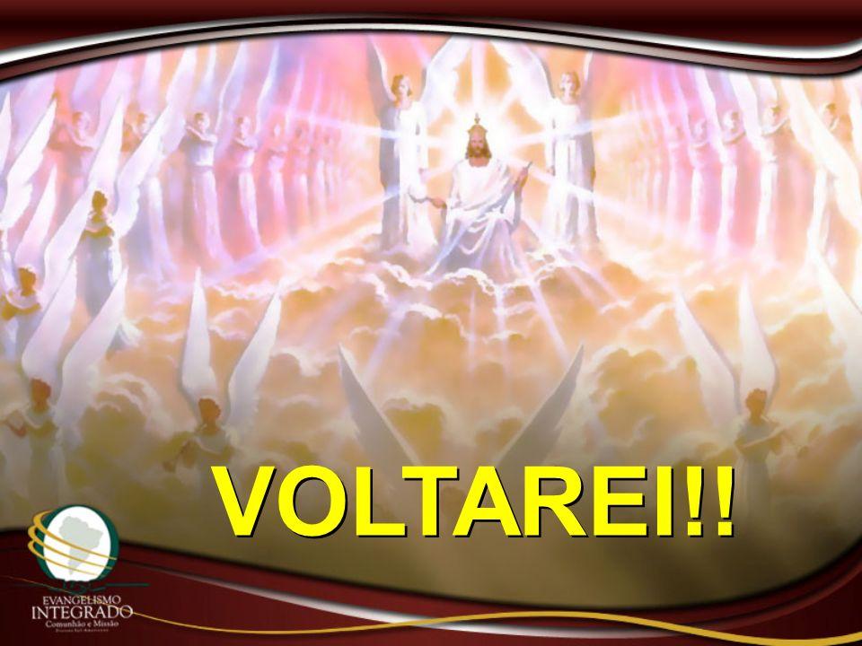 VOLTAREI!!