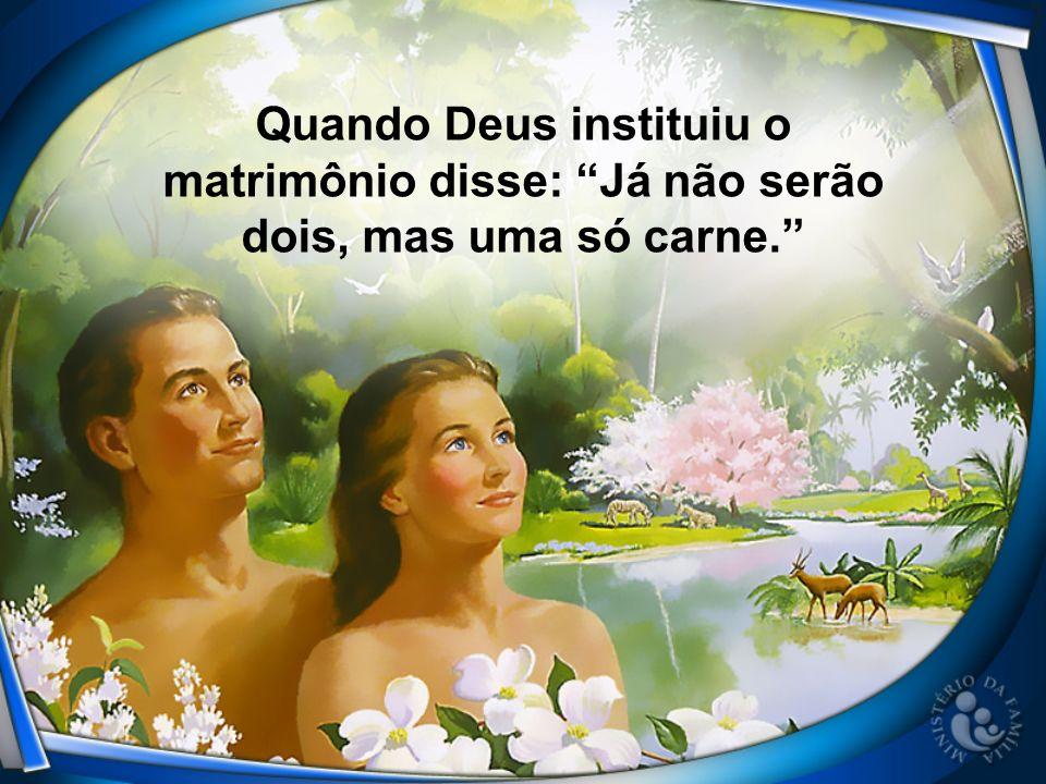 Quando Deus instituiu o matrimônio disse: Já não serão dois, mas uma só carne.